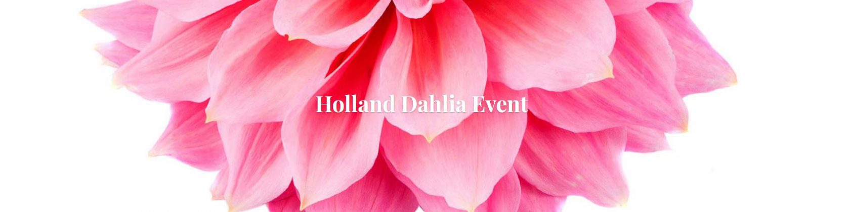Holland Dahlia Event