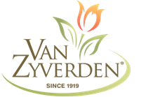 Zyverden_Van